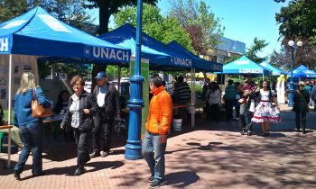 UnACh Organizó la VII Feria Orgánica y Agroecológica