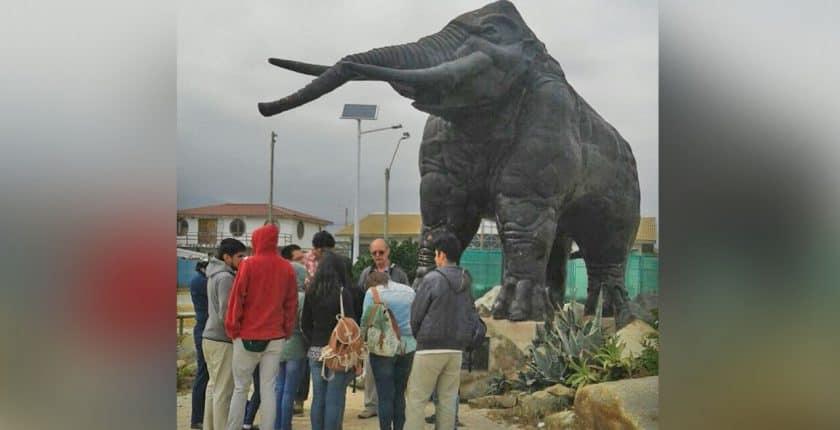 Carrera de Pedagogía en Historia realiza gira de estudios en la Región de Coquimbo