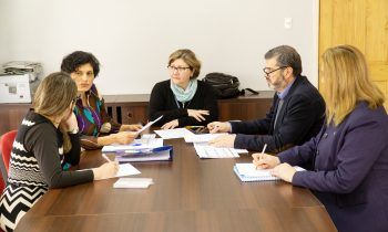 Reunión del Comité Académico de Magíster en Salud Pública