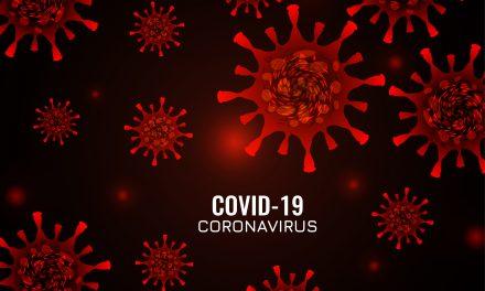 Investigadores de la UNACH apoyan a la Seremi de Salud de Ñuble con la proyección regional de la epidemia Covid-19