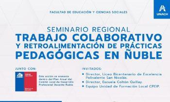 """FECS organiza Seminario Regional """"Trabajo Colaborativo y Retroalimentación de Prácticas en Ñuble"""""""